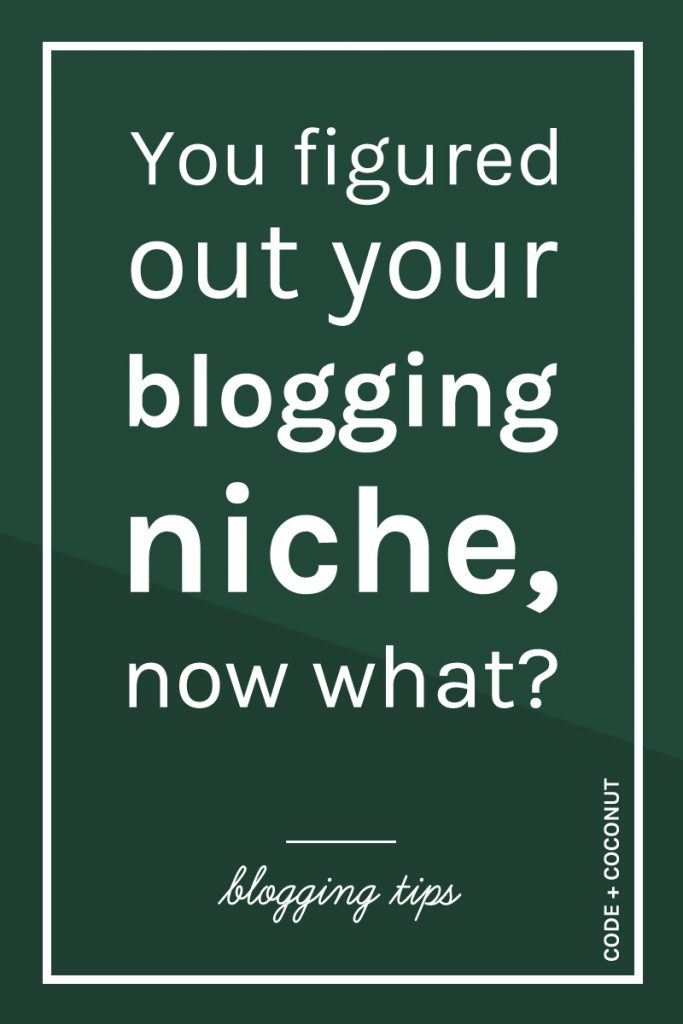 You Figured Out Your Blogging Niche, Now What?